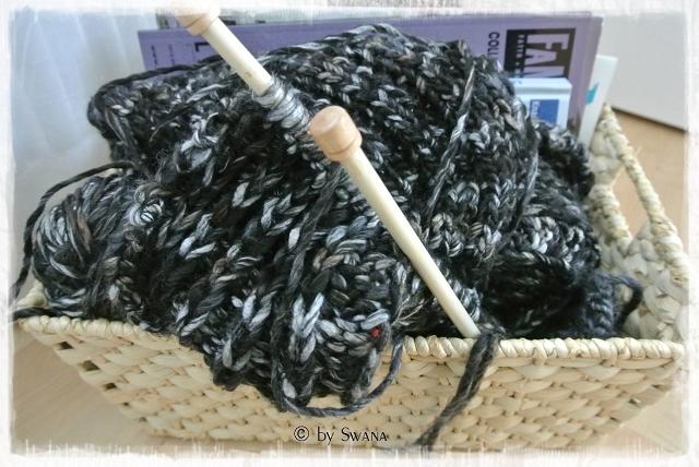 • stricken • Jacke • ein unfertiges Projekt