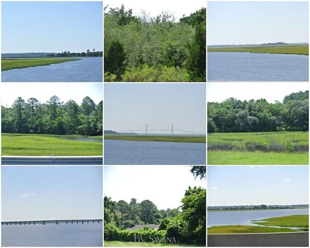 • on tour • Jacksonville nach Savannah • Wald und Wasser