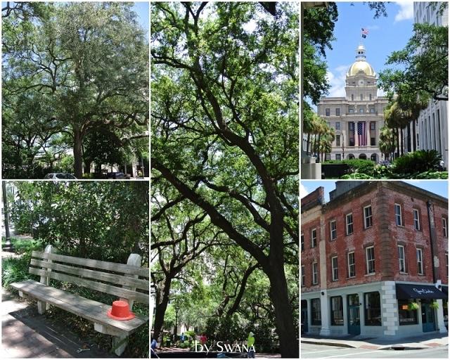 • on tour • Jacksonville nach Savannah • Hut vergessen?