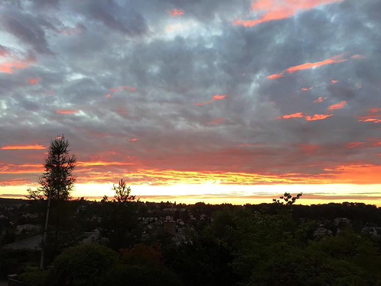 tell a story • Lieblingsplatz • Ausblick August 2017