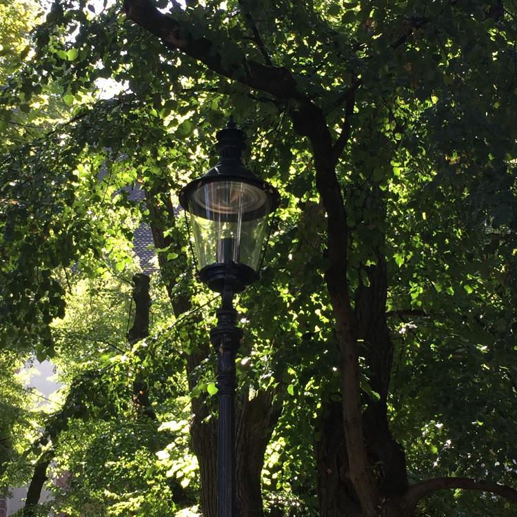 • tell a story • Geschichten erzählen über meine Stadt Basel • im Sommer