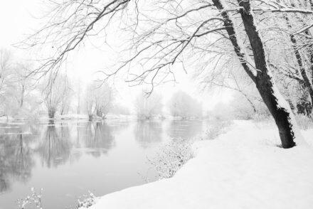 Wintergruss
